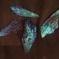 New Crystals in Stock: Black Kyanite with Dichroic