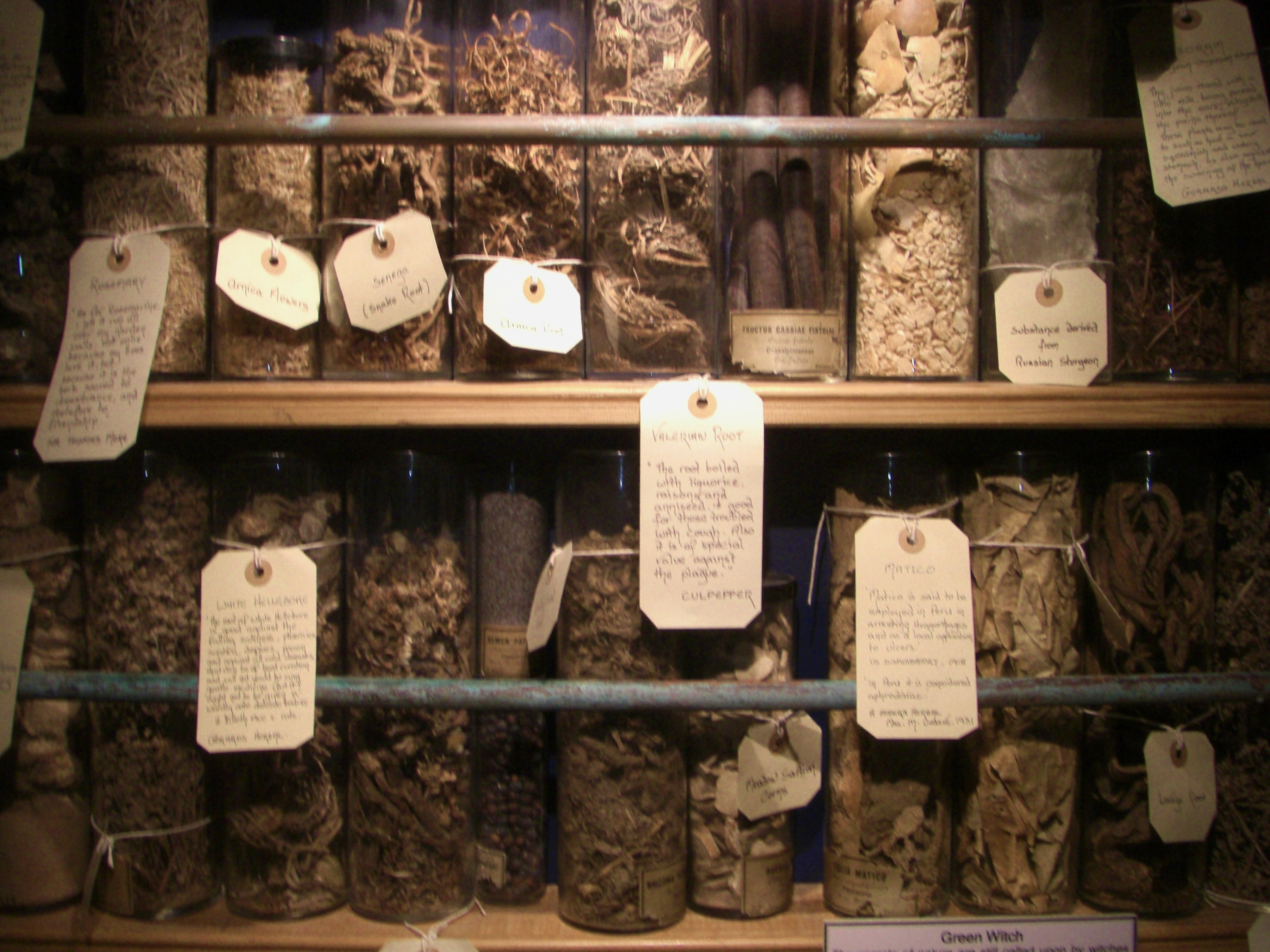 Herbs for Witches | The Green Man Store Los Angeles Metaphysical Shop